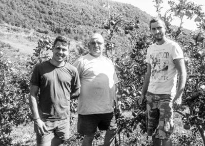 Les vergers de l'Aveyron